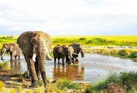 三大国家公园10日7晚+全程越野车+非洲冒险