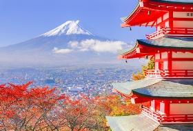 7日6晚私家团(4钻)·2晚环球影城酒店 京都和服体验 奈良喂萌鹿