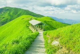 海外旅行社最新南昌到高山草甸旅游线路,户外旅游和摄影的天堂