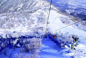 不带钱包游东北 哈尔滨、亚布力滑雪场、童话雪乡双飞5日游