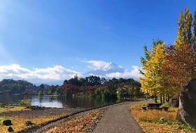 和风日本追樱双温泉6日游 南昌起止 江西到日本旅游  编号:244