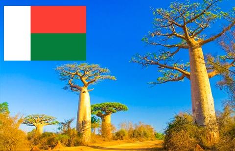 马达加斯旅游签证